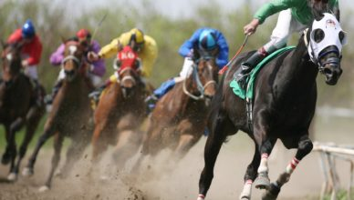 How To Use Horse Racing Ratings Systems
