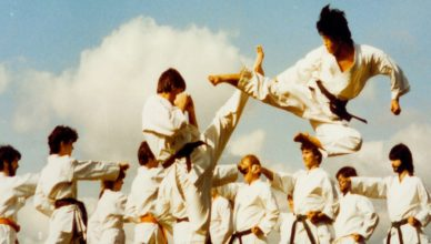If You Want To Study Martial Arts You Must Make Sure You Select The Right One
