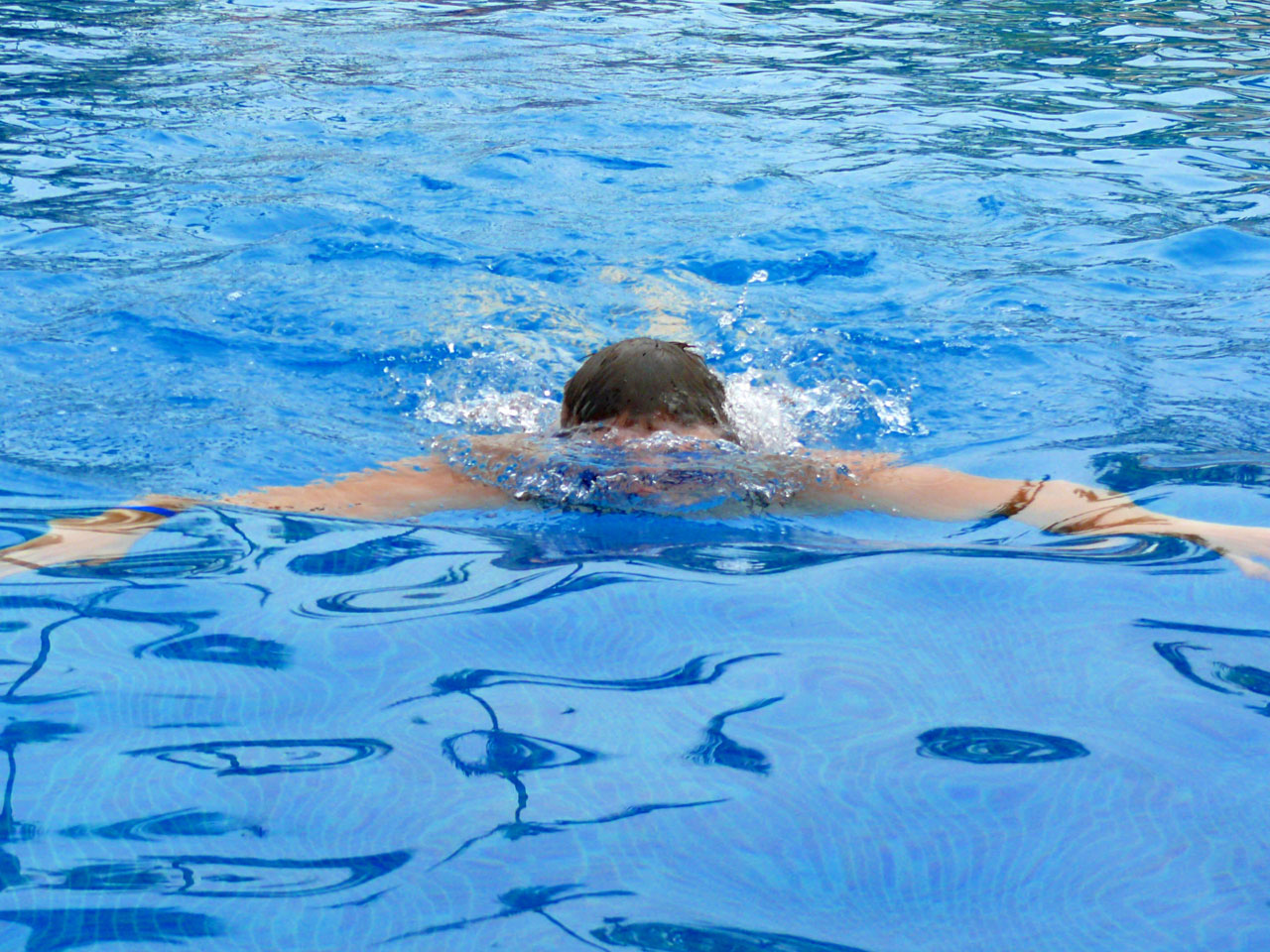 Learn How To Free Dive by Holding Your Breath With a Free Diving Course