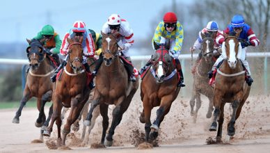 Older Horse Stakes Saturday