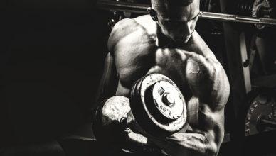 Stanozolol Usage In Bodybuilding